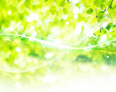 #2 自然を取り込み、環境と調和する