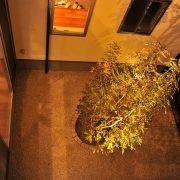 坪庭(コートハウス)のある家 メリット・デメリット8つのポイント